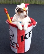 Creative costume ideas for dogs: Lil Bucket of Chicken