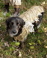 Khaleesi's Battle Dog Homemade Costume