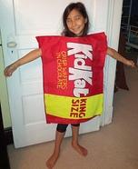 Kid Kat Homemade Costume