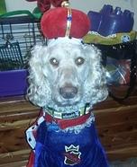 King Arthur Dog Costume