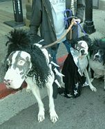 KISS Homemade Dogs Costumes