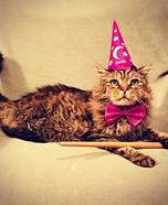 Kitty Wizard Homemade Costume