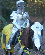 Knight in Shiny Armour Homemade Costume