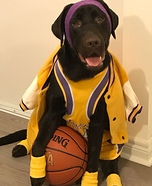 Kobe Bryant Dog Homemade Costume