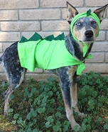 Kronosaurus Homemade Costume