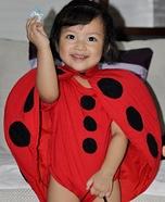 Lady Bug Baby Costume