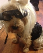 Lady Gaga Costume for Dogs
