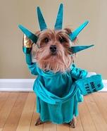 Lady Liberty Dog Homemade Costume