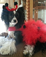 Ladybug Dog Costume
