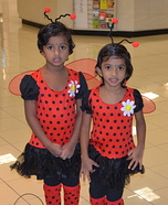 Ladybugs Twins Costume