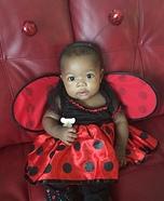 Infant Ladybug Baby Costume