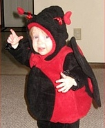 DIY Ladybug Costume for Babies