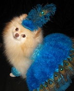 Creative costume ideas for dogs: Las Vegas Showdog Halloween Costume