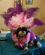 Las Vegas Showgirl Dog Homemade Costume