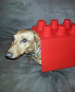 Creative costume ideas for dogs: Lego Dog Costume