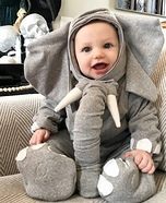 Liam the Elephant Homemade Costume