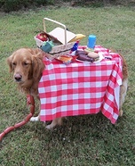 Creative costume ideas for dogs: Life is a Picnic