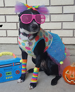 Like Totally Tubular Dog Homemade Costume