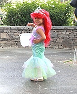Disney Mermaid Ariel and Sebastian Costumes