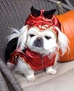 Lil Devil Dog Homemade Costume