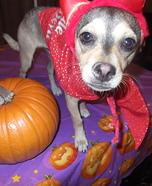 Lil Devil Dog Costume