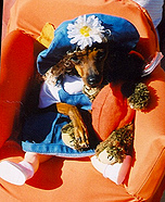 Little Girl Dog Costume