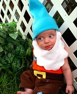 Lil' Gnome Homemade Costume