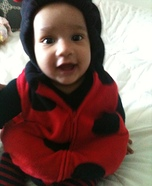 Lil Ladybug Baby Costume