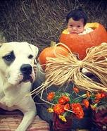 Lil Pumpkin Homemade Costume