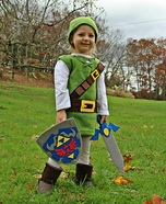 Link from The Legend of Zelda DIY Costume