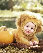 Cutest Lion Baby Costume