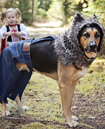 LIttle Bad Wolf Homemade Costume