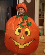 Big Pumpkin Costume