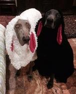 Little Black Sheep Dog Homemade Costume