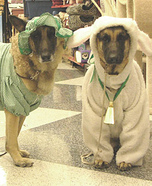 Little Bo Peep and Sheep Dog Costumes