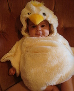 Little Chicken Homemade Costume