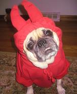 Little Devil Dog Costume