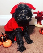 Little Devil Dog Halloween Costume