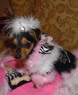Little Diva Dog Homemade Costume