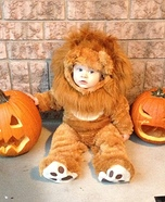 Little Lion Costume