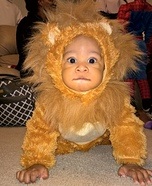 DIY Little Lion Baby Costume