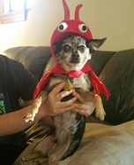 Little Lobster Dog Homemade Costume