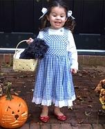 Little Miss Dorothy Homemade Costume