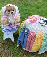 Creative costume ideas for dogs: Little Miss Muffet Costume