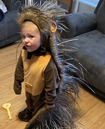 Little Miss Porcupine Homemade Costume
