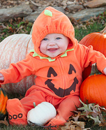 Little Pumpkin & Lion Baby Costumes