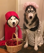 Little Red and Grandma Dogs Homemade Costume