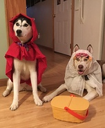 Little Red Riding Hood and the Bad Wolf Dogs Homemade Costume