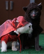 Little Red Riding Hood and the Big Bad Wolf Homemade Costumes for Pets