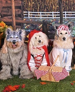 Little Red Riding Hood Dogs Homemade Costume
